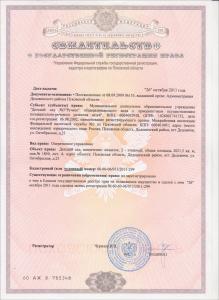 Свидетельство о гос_ регистрации