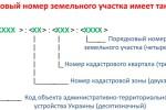 struktura-kadastrovogo-nomera-zemelnogo-uchastka