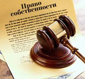 ustanovlenie-prava-v-sude_7