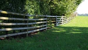 wood-fence-466106_1920