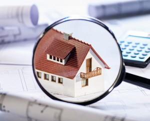 Property in Focus