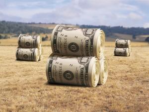 Что такое справка о кадастровой стоимости земельного участка