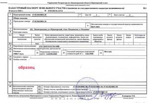 kadastovyj-pasport-na-zemlju-1