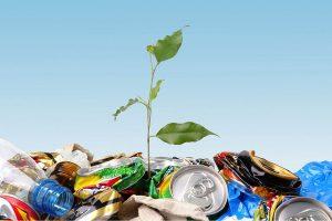 Что такое бытовые отходы и что относится к ТБО