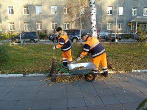 Уборка дворовых территорий в зимний и летний периоды