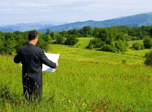 Как заказать выписку из ЕГРН на земельный участок