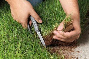 Изъятие земель – причины, процедура и компенсация