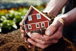 Приватизация дачного участка в садоводческом товариществе